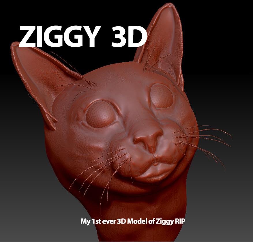 3D Model - RIP Ziggy - Help please! on Behance