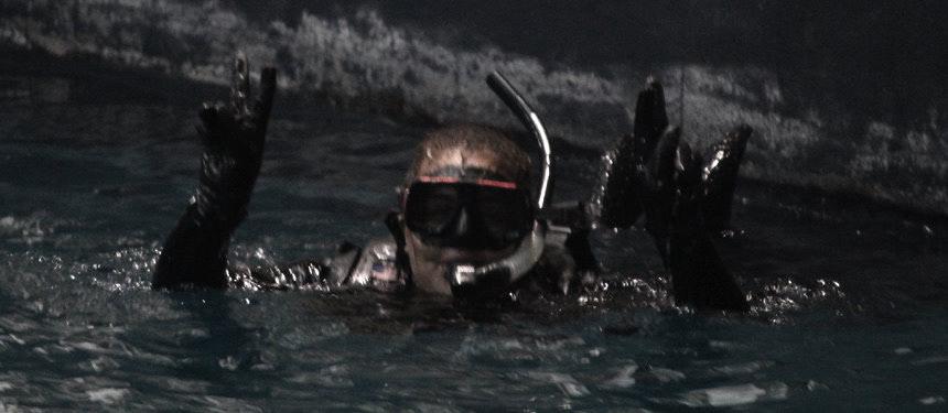 aquarium,Birthday,diving,GeorgiaAquarium,marinelife