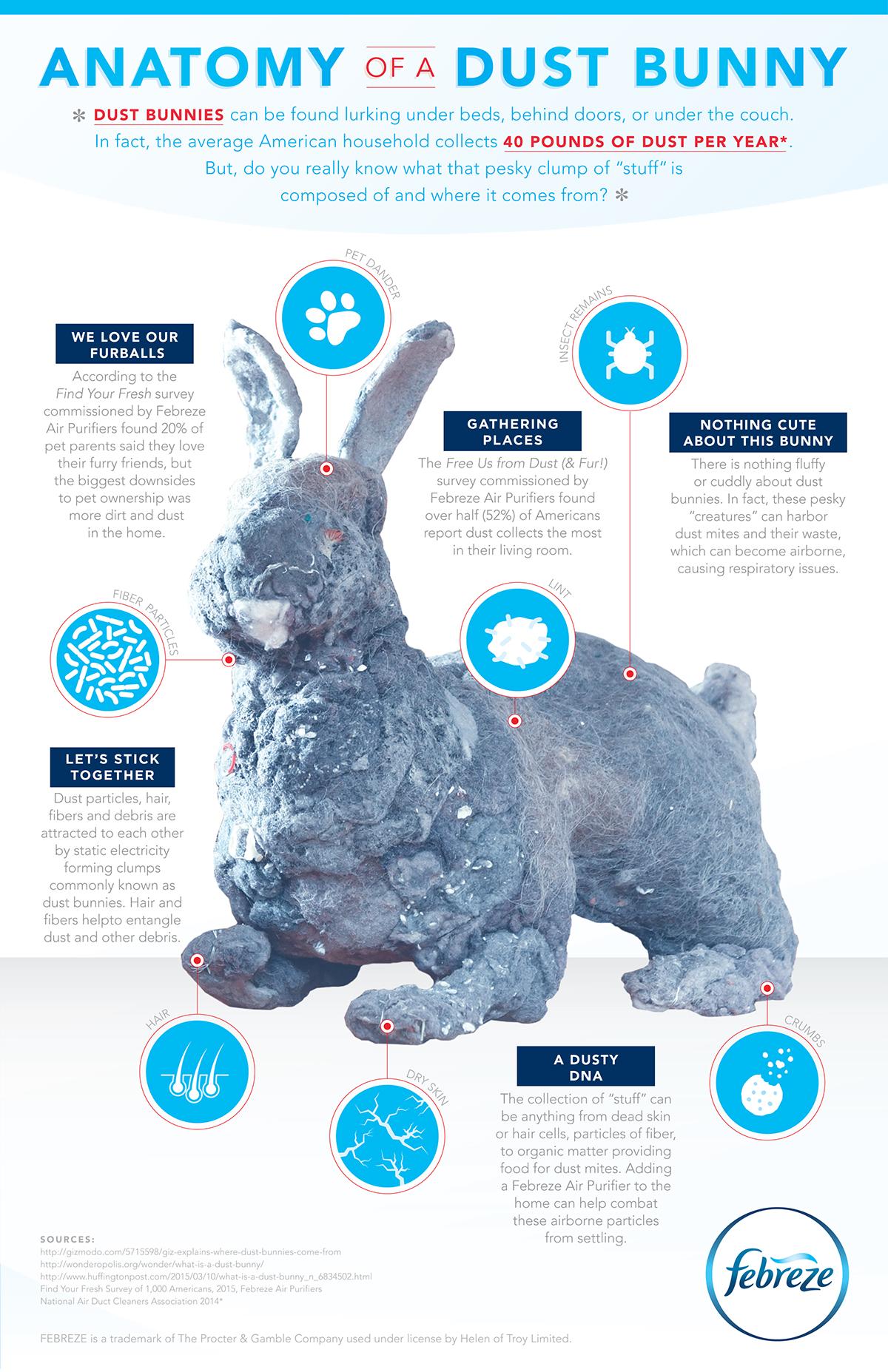 Febreze: Anatomy of a Dust Bunny Infographic on Behance