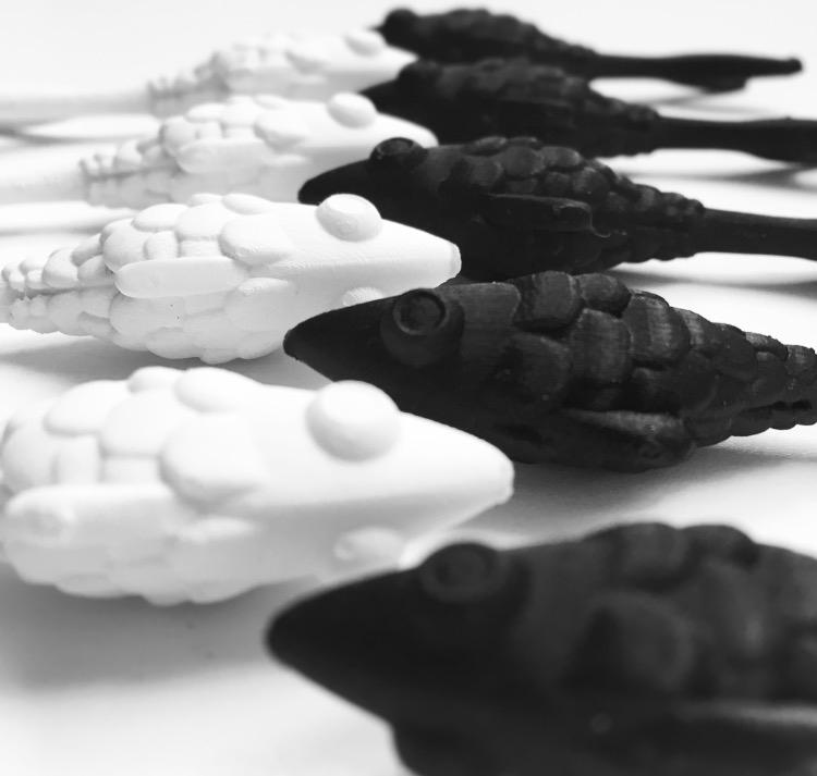 adobeawards motiongraphics animation  ILLUSTRATION  fish chaos graduationproject