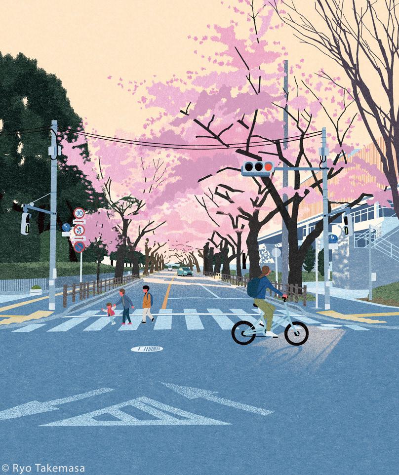 Bike Cherry blossoms japan Landscape sakura spring tokyo