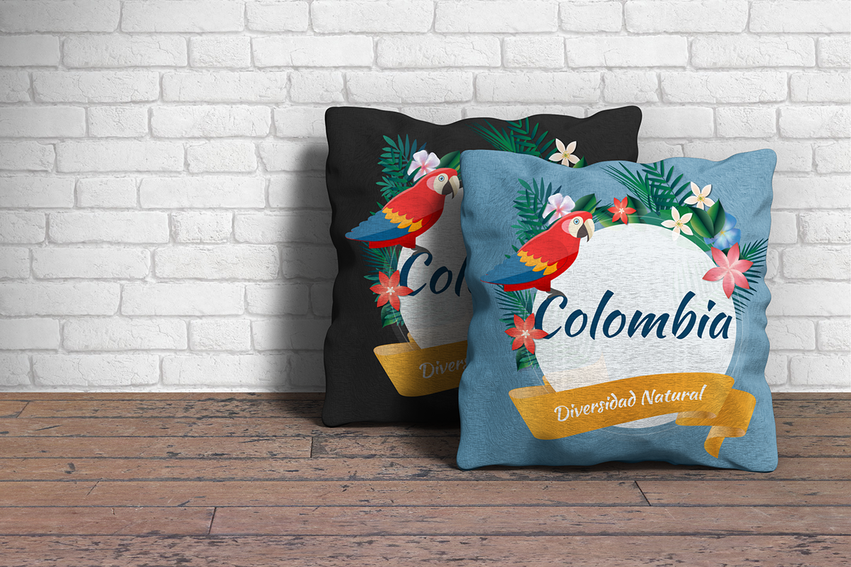 colombia diversidad naturaleza bird