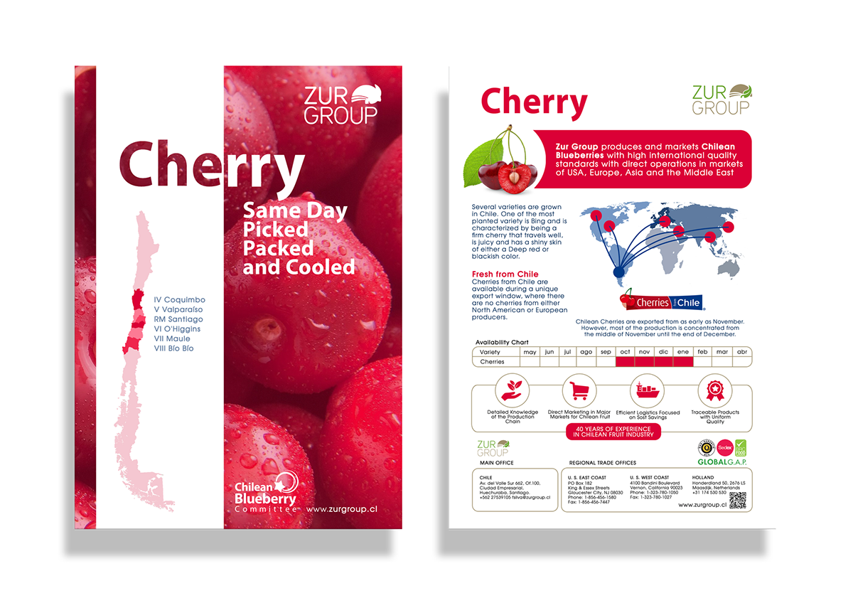 zurgroup blueberry cherry chile