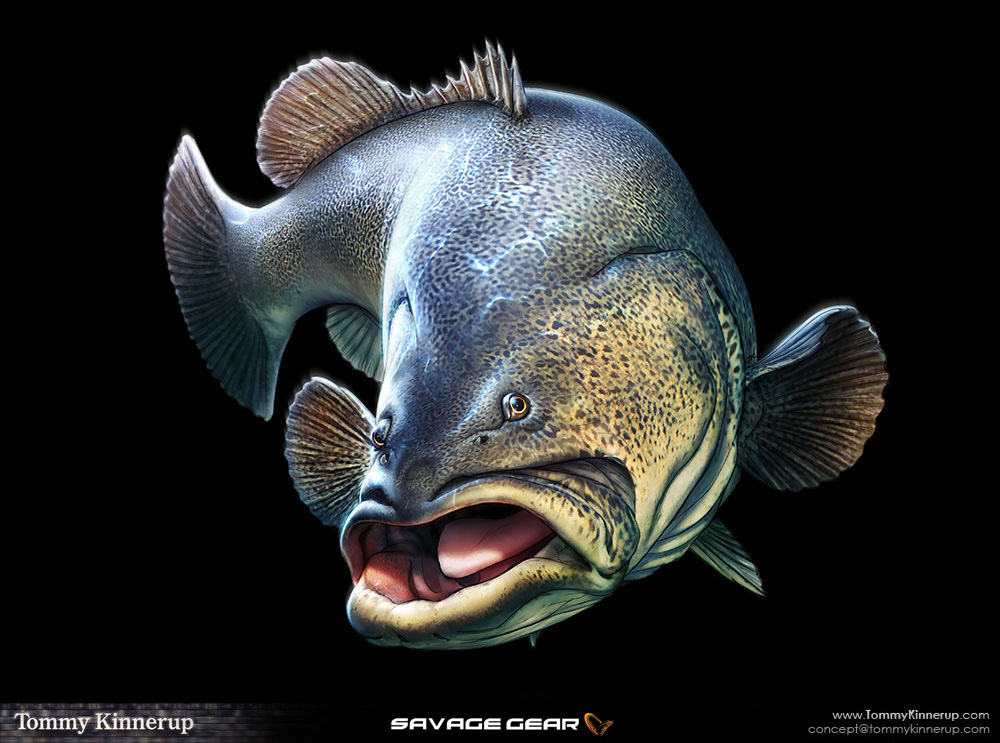 Character  fish  Pike halibut seatrout seabass pearch Zandar concept art tommy kinnerup savage-gear prologic fishing common carp barramundi flathead