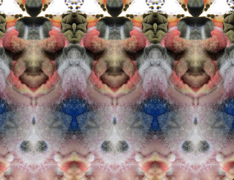 art bioart Biodesign blend colours design Fungi glitche layers microbiology mirror mix pattern petridish pharmacy texture