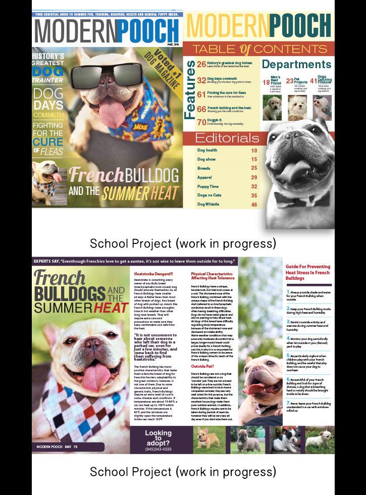 dog Frenchie bulldog ad magazine feature cover
