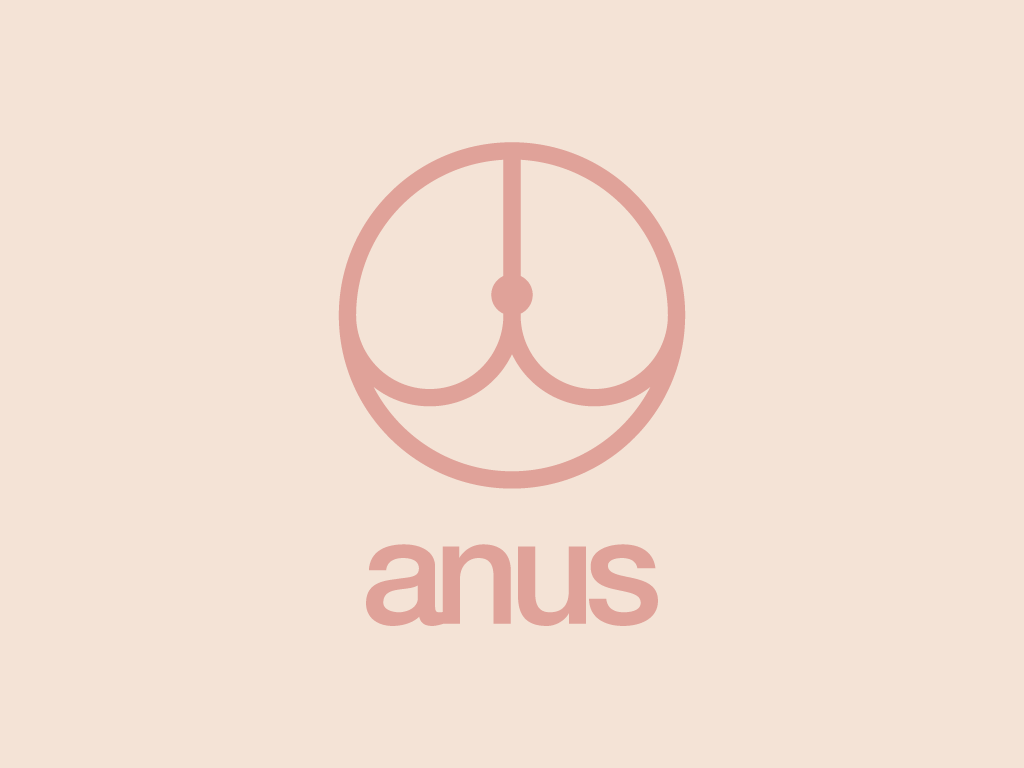 sexanatomy sex anatomy logo cerrapio asti minimal pink Fun funny helvetica graphic design tits Minimalism