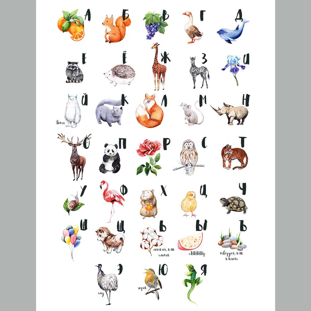 watercolor animals u0026 birds on behance