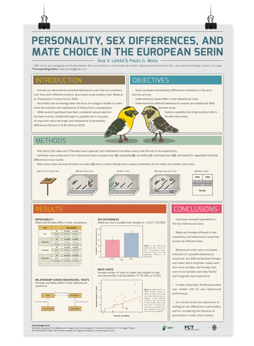 Free research poster templates european sizes