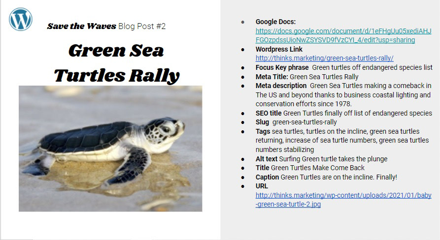 http://thinks.marketing/green-sea-turtles-rally/
