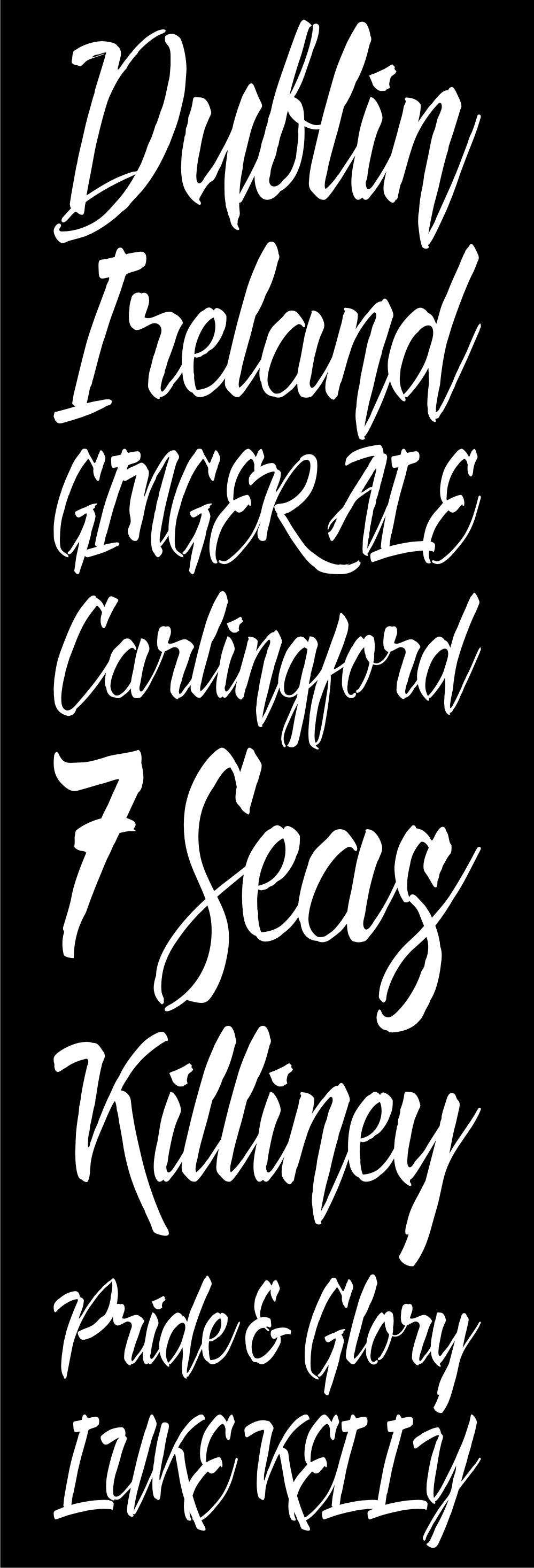 font Typeface lettering HAND LETTERING brush lettering Script brush deadhead brush twicolabs