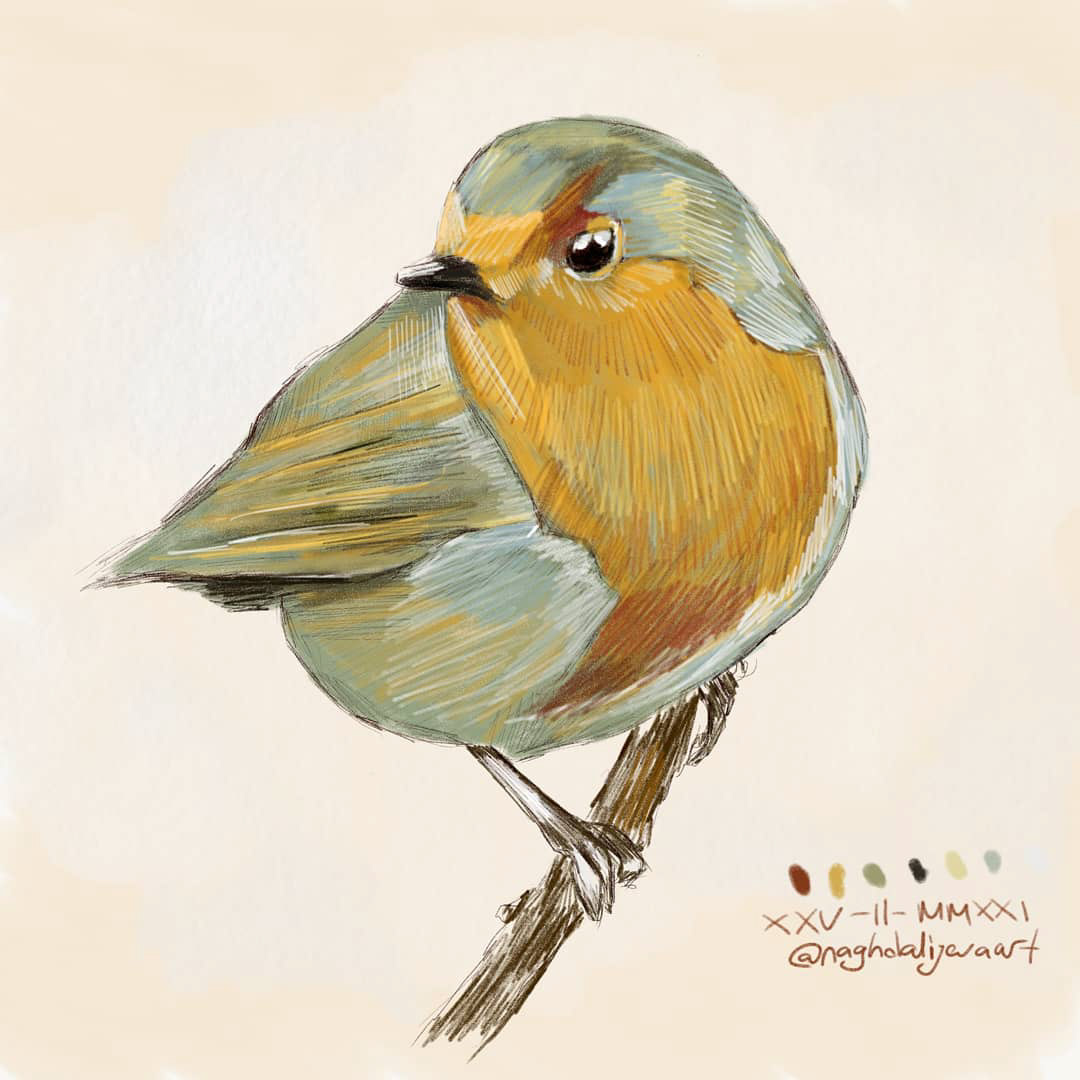 Image may contain: animal, sketch and bird