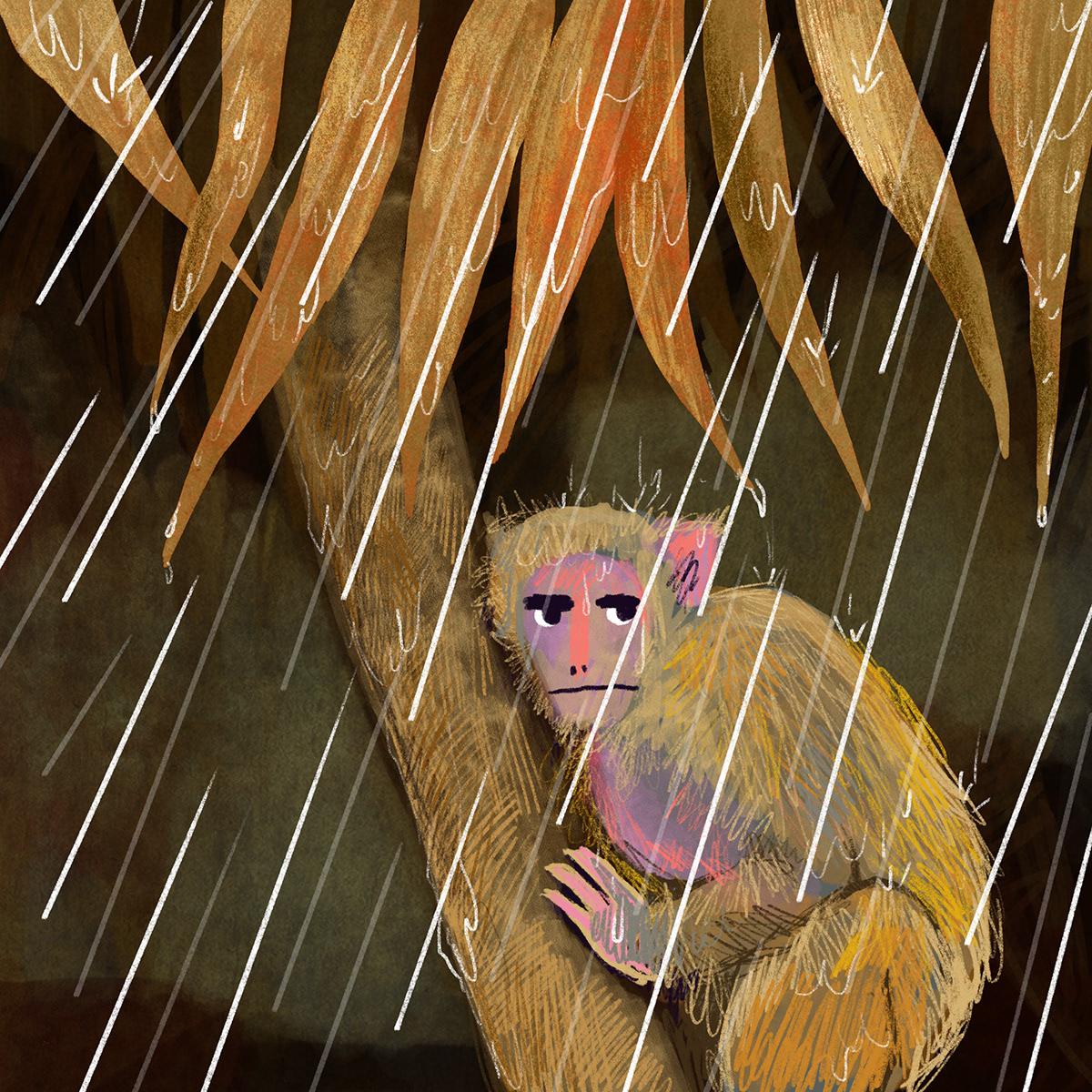 Children's Books children's illustration kidlit kidlitart monkey rain illustration Story Book