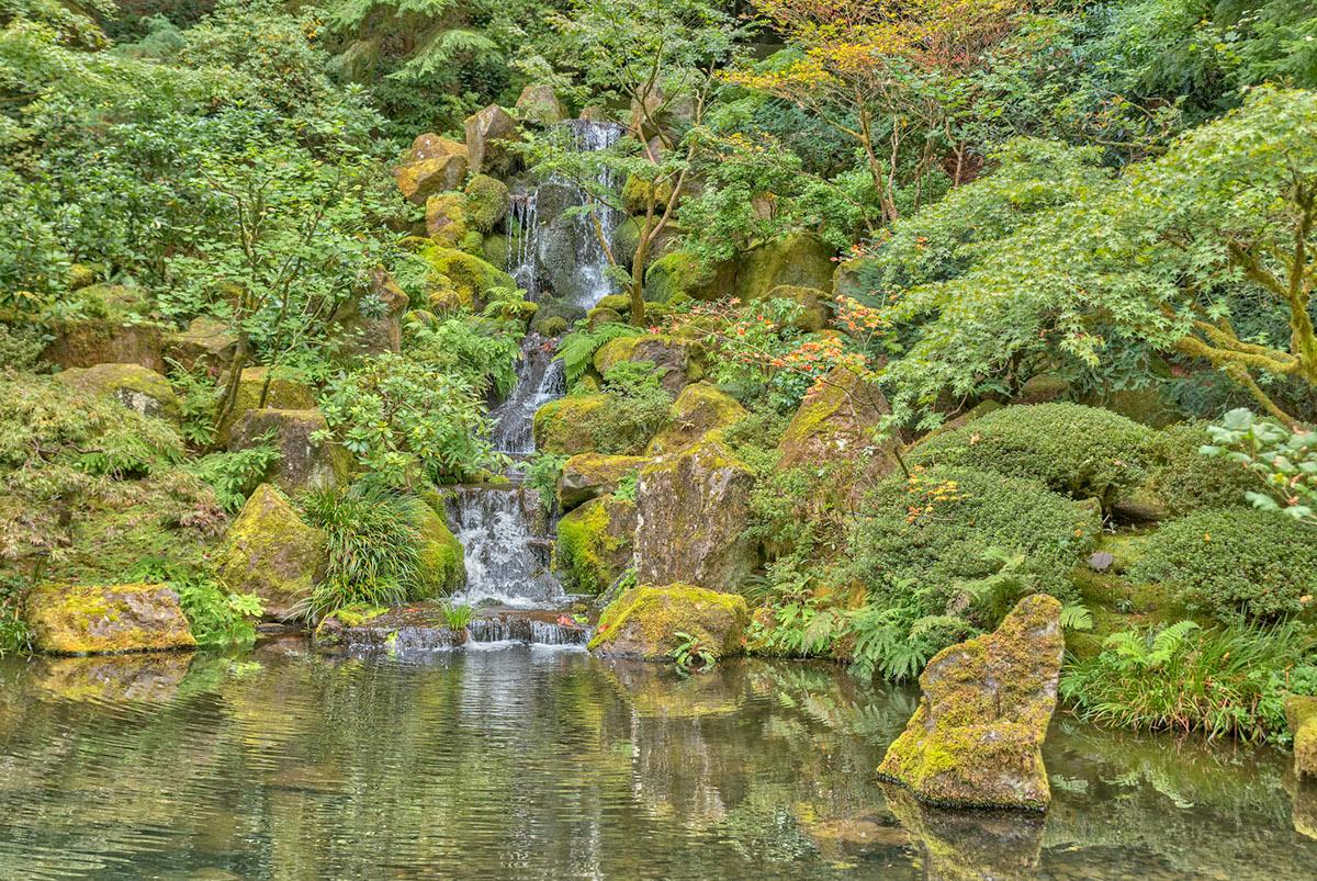 Adobe Portfolio Oregon Travel Ocean