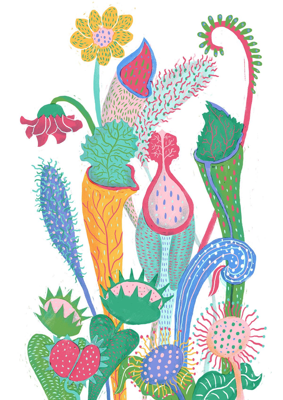 plants Flowers uivo5