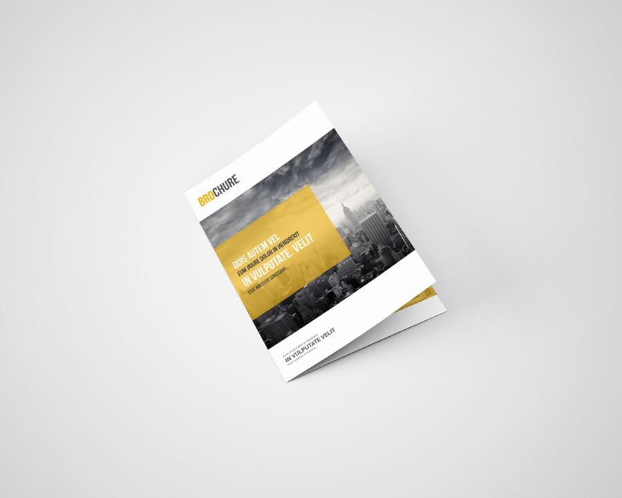 a5 bi fold brochure mockup free on behance