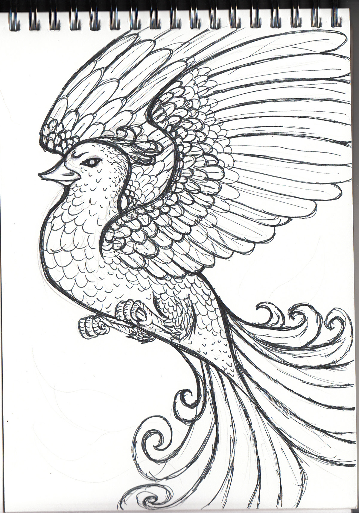 Mythical Creatures Colouring Book On Behance