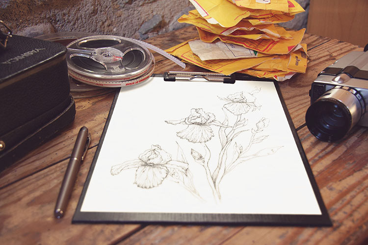 Sketches for label design