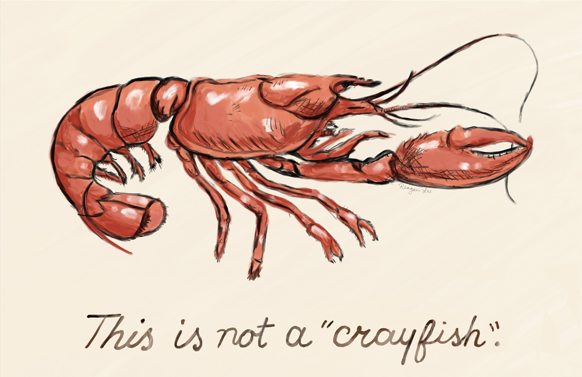 Pinch Dat Tail Suck Dat Head Design Funny Crawfish Boil Drawing By Noirty Designs