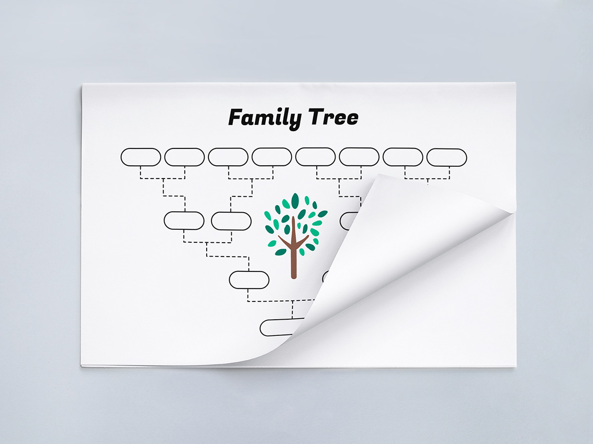 simple family tree template on pantone canvas gallery