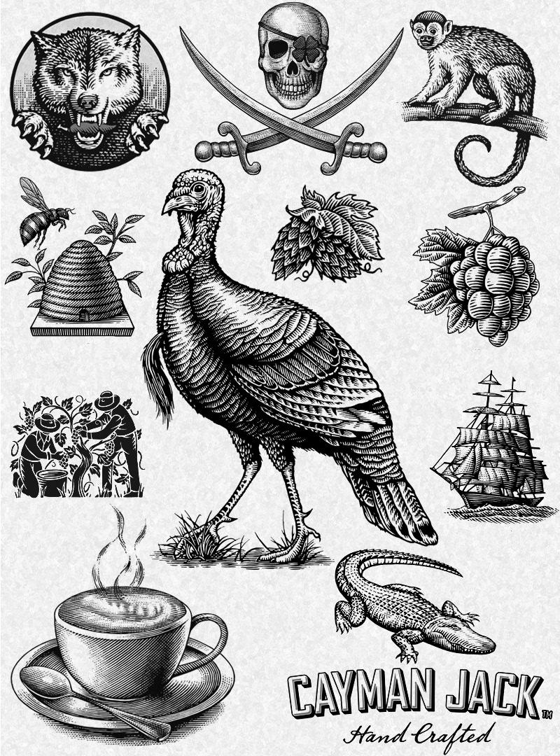Image may contain: book, bird and drawing