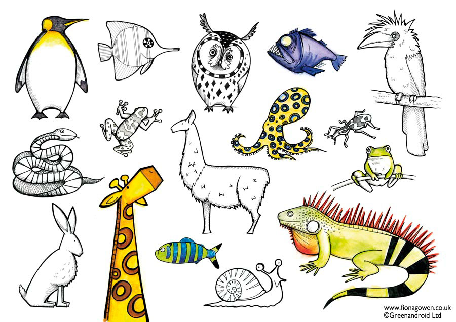 Selected illustrations from How to Draw Animals Book Illustrated by Fiona Gowen. Animals featured include penguin, giraffe, lizard, fish, snail, snake and owl.