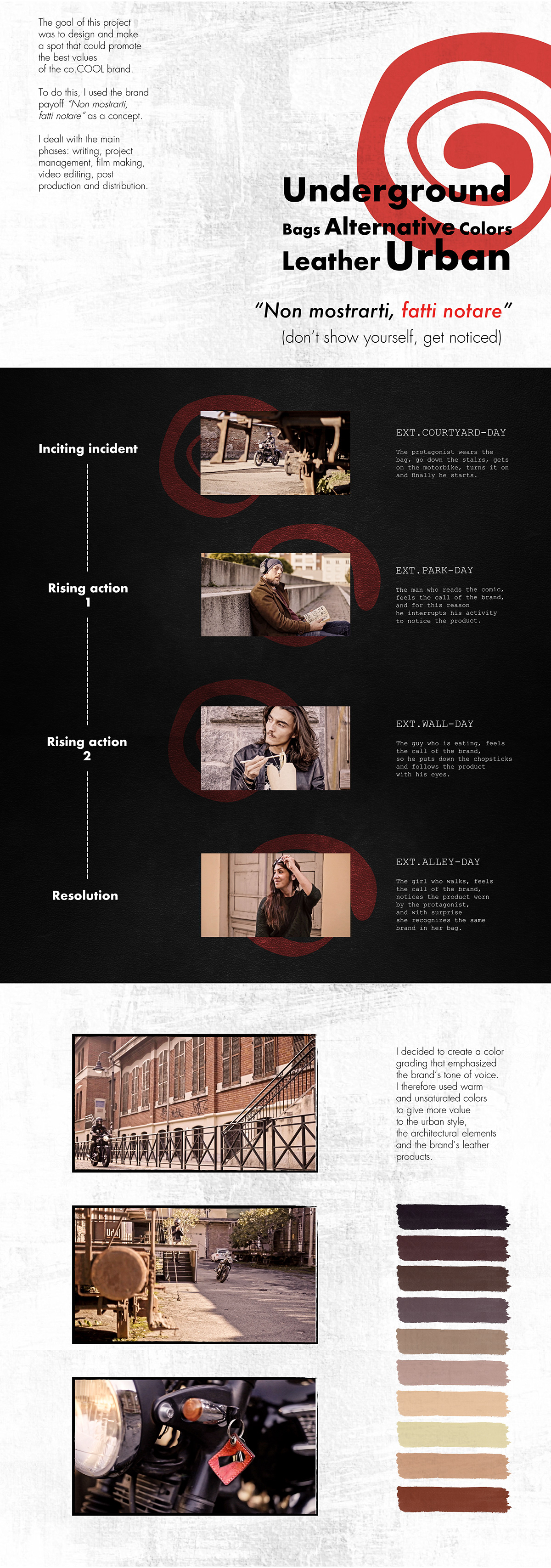 brand brand identity branding  color grading Video Editing videomaking