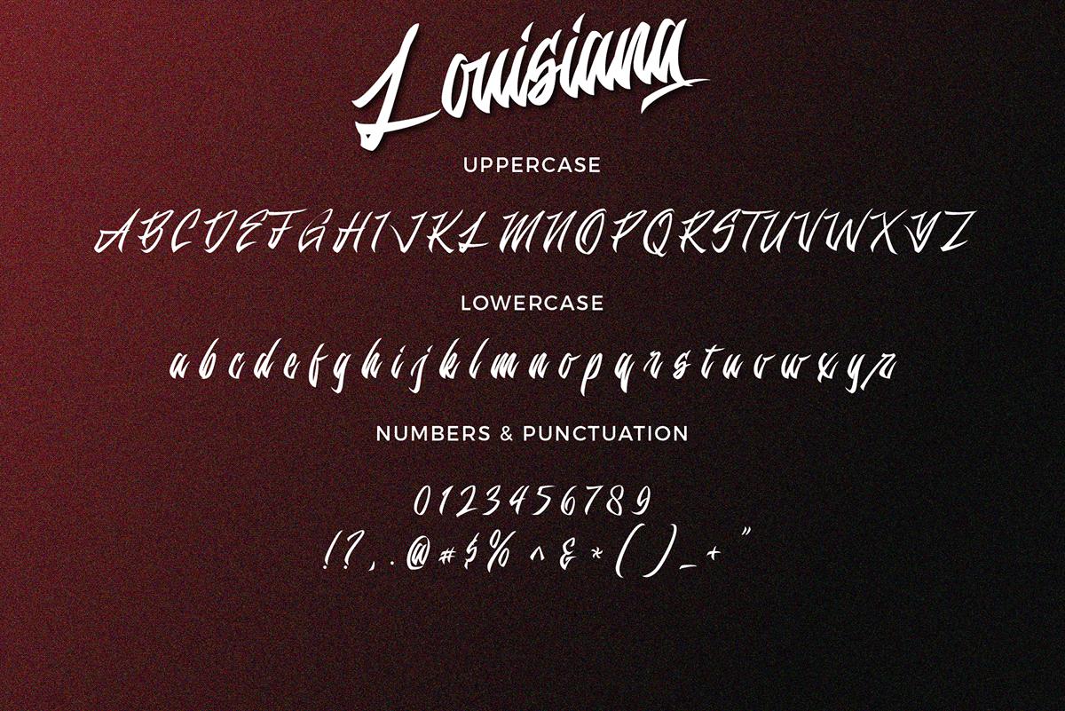 branding  font fonts hand drawn hand script Logotype louisiana Script