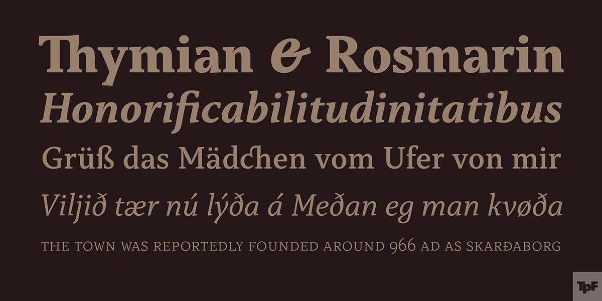 typefolio typedesign capitolina fonts serif Typeface