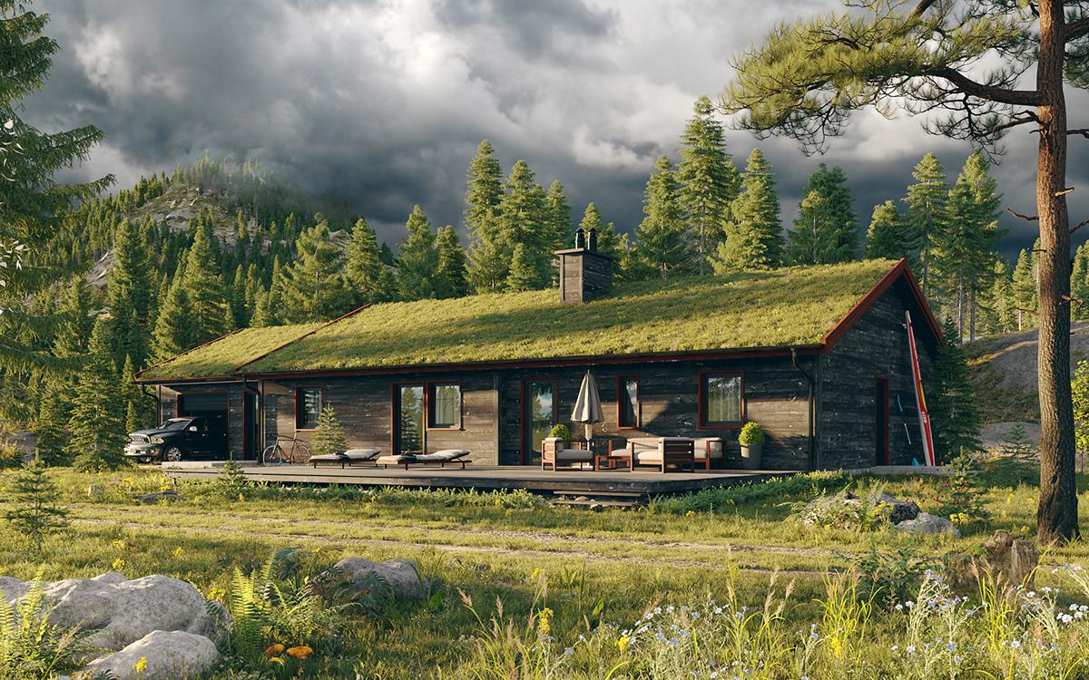 CG visualization Render CGI Nature house rendering corona render  3dart 3dexterior