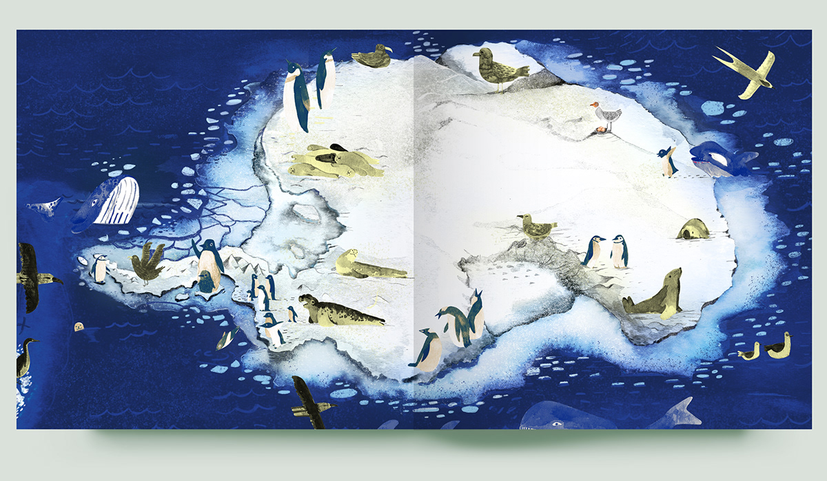 antarctica chile magallanes patagonia