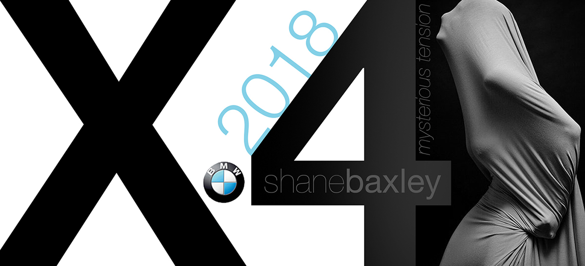 логотип bmw x4