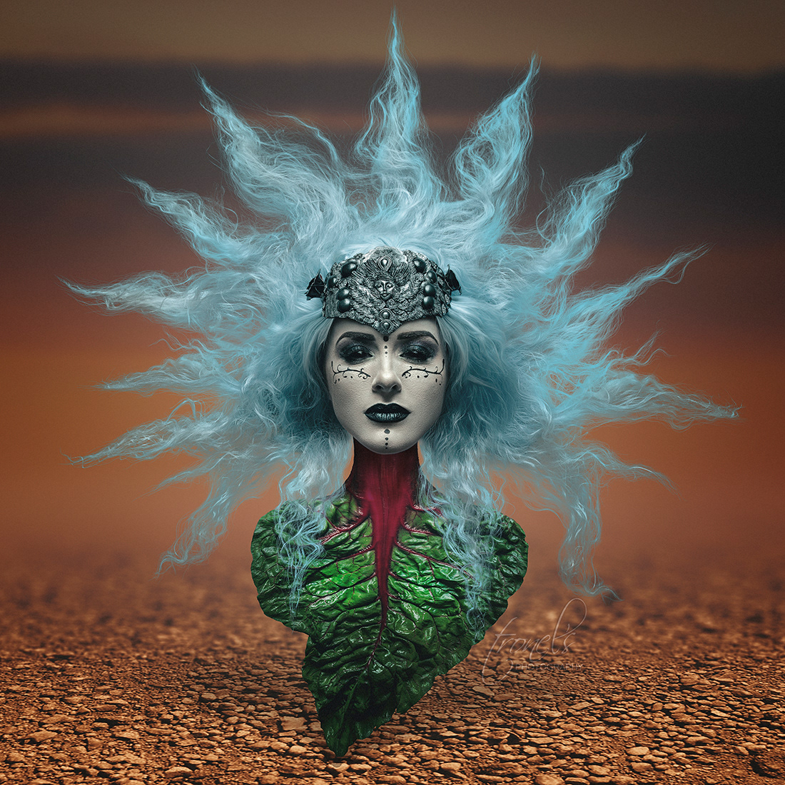 Celtic witch on Behance