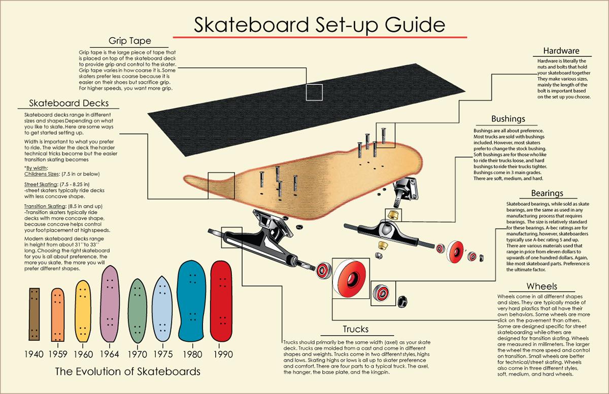Skateboard Infograph On Behance Parts Diagram