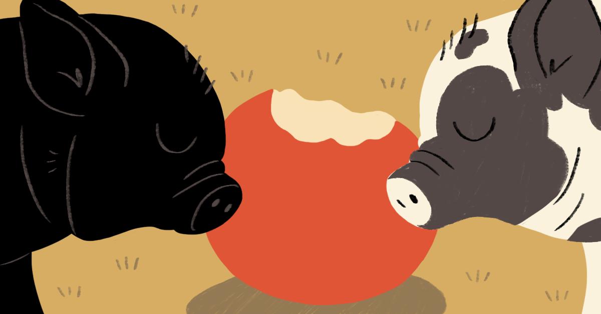 chat-bot Education cute animals psychology