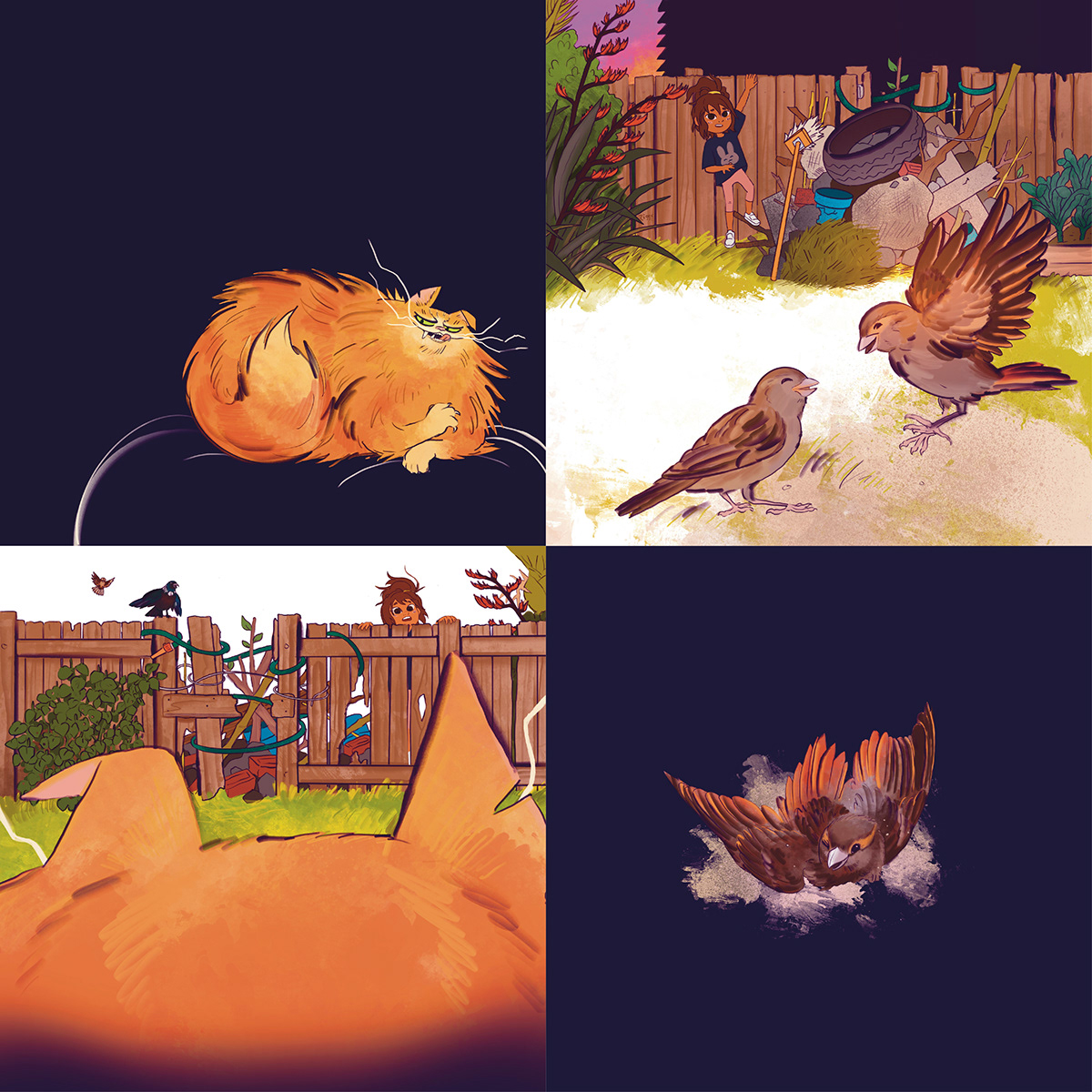 birds book Cat children illustrations kids New Zealand Picture book story Story Book