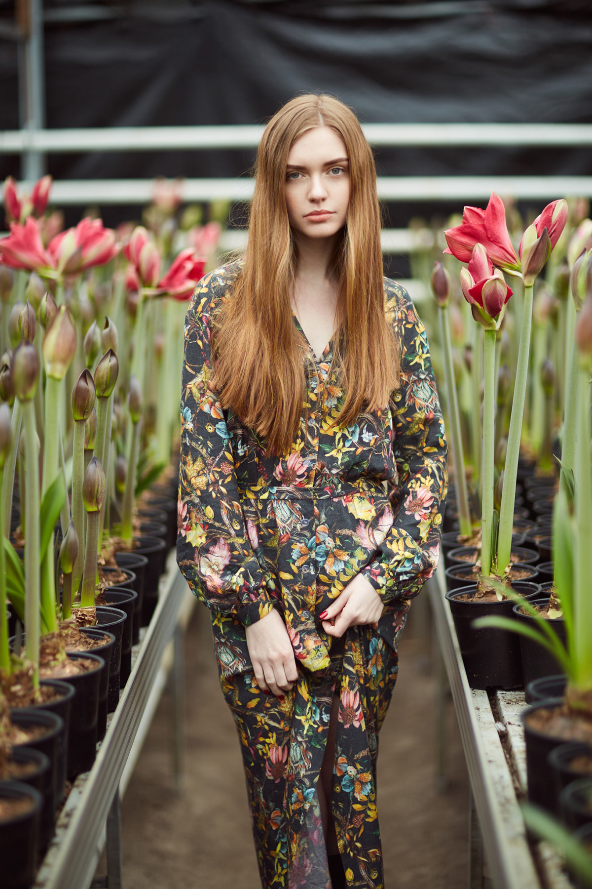 Flowers greenhouses Natural Light portrait redhead spring tulips woman
