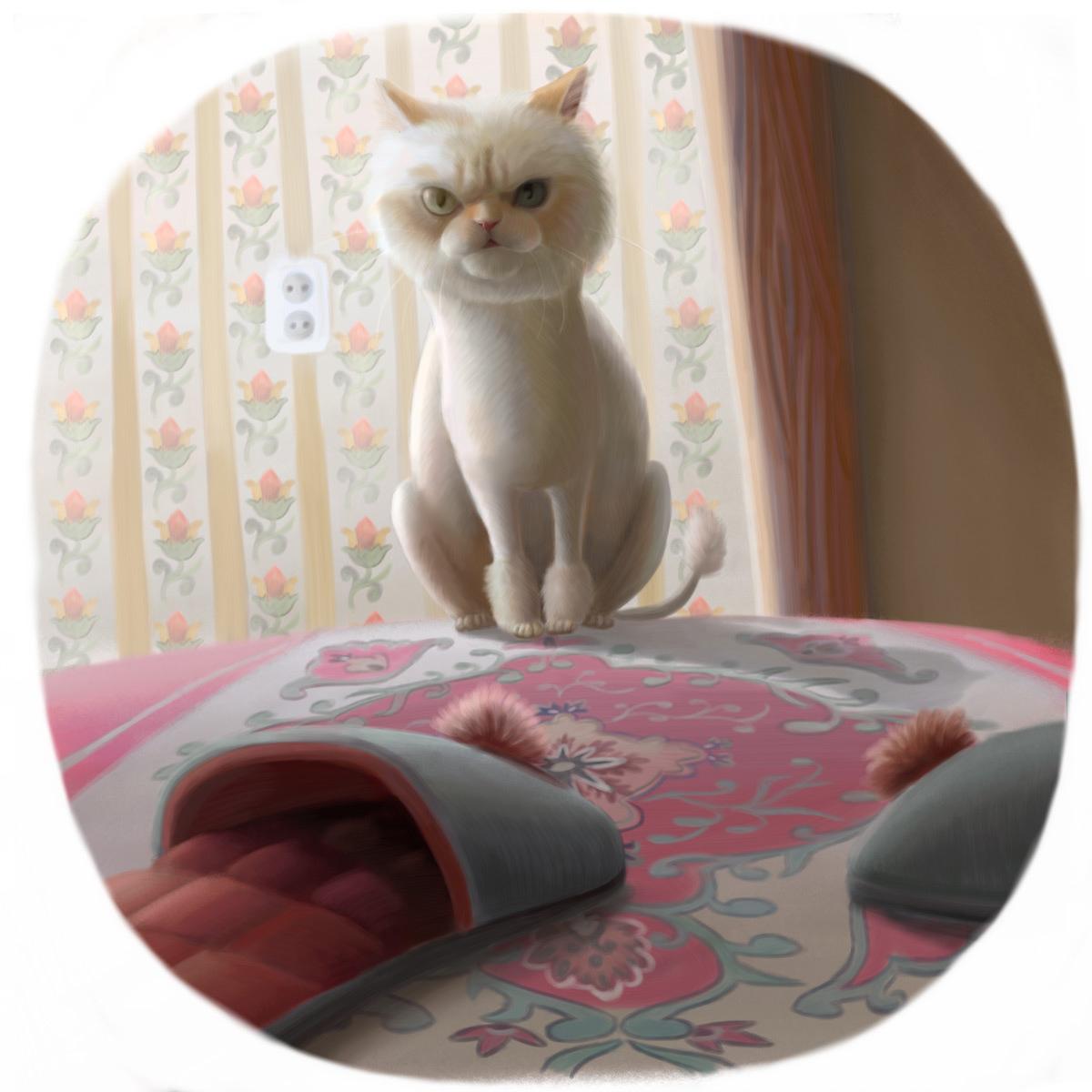 Cat kitty dog