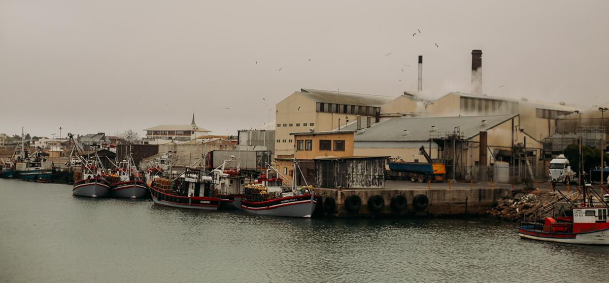 Photography ,cinematography,landscapes,birds,Ocean,west coast,western cape,fishing,braai