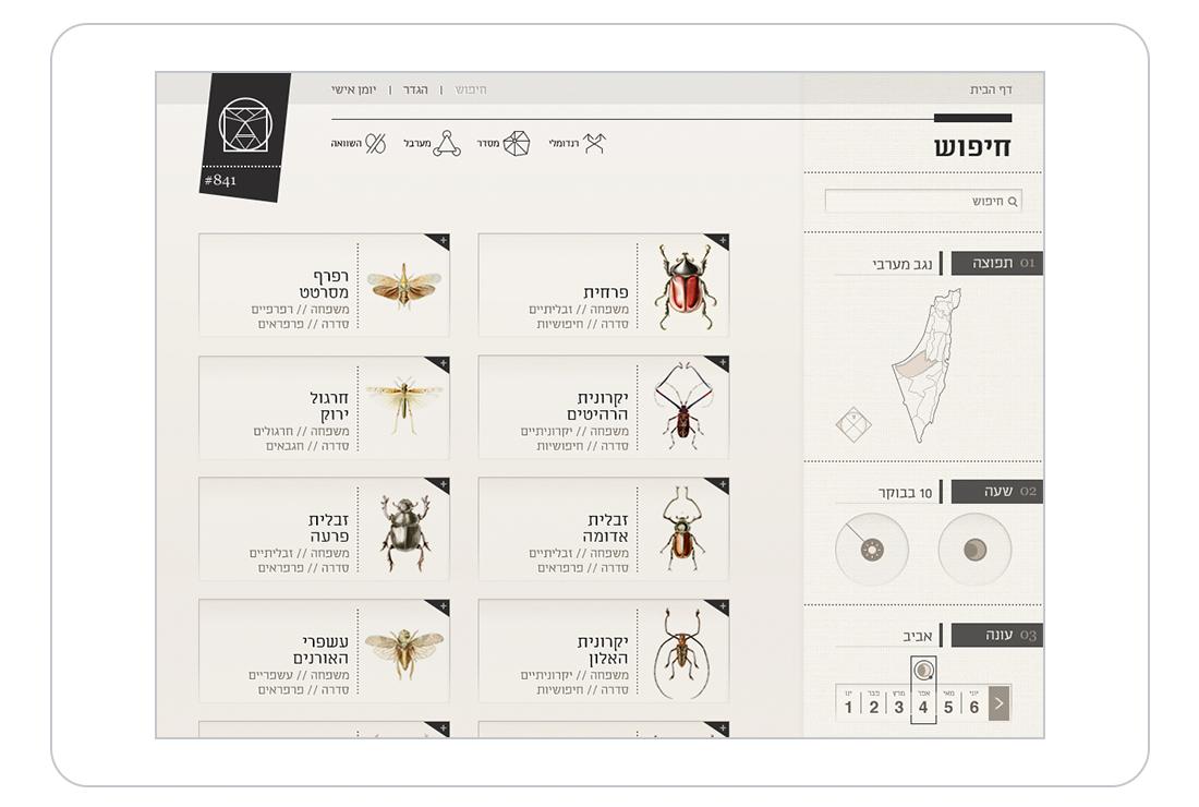 Application Design typography   israel hebrew  ipad app  insect  UI  UX  Interaction Design  graphic design