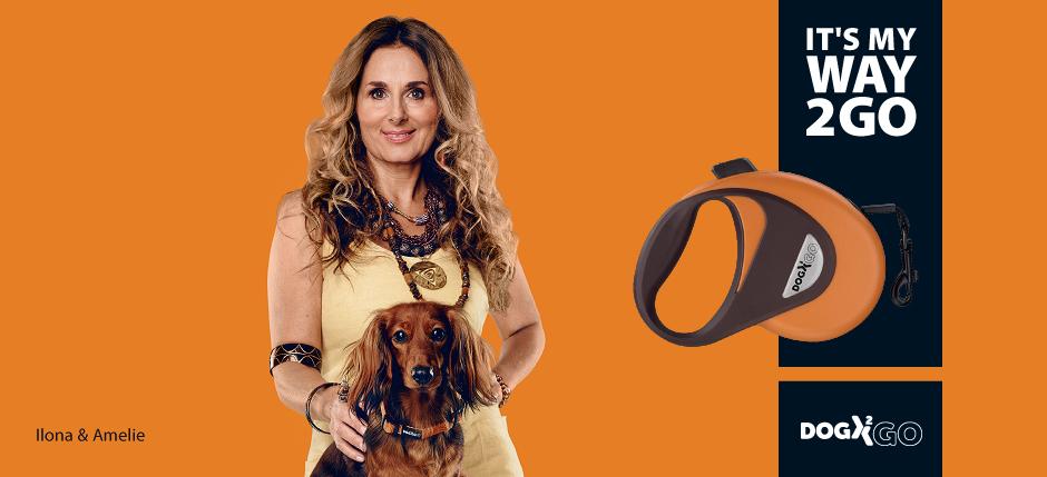 retractable dog leash walking lead line Accessory Pet plastic