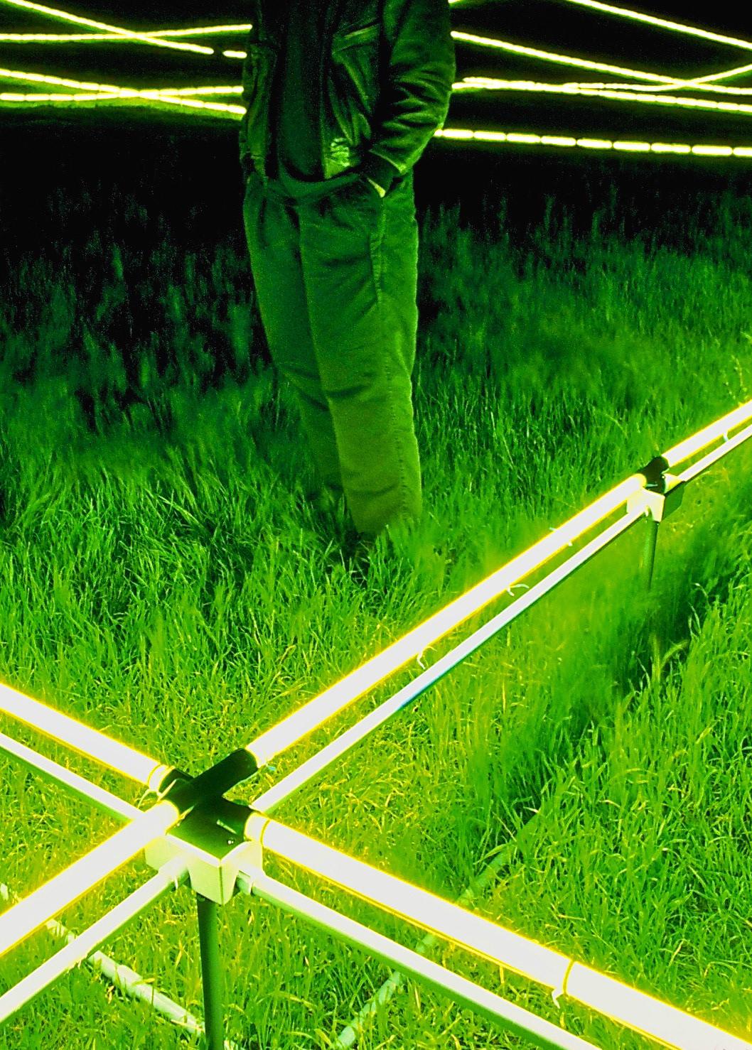 art artist public art light light art Site-specific Installation Art land art environmental art Landscape
