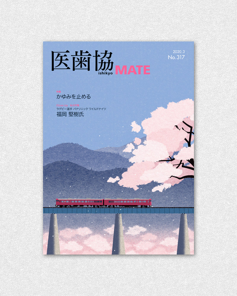 bridge Cherry blossoms japan Landscape pink spring train