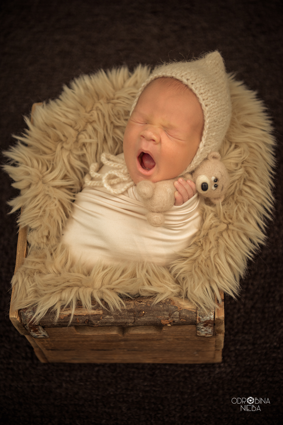fotografia noworodkowa fotografia noworodkowa Warszawa newborn photography newborn photo