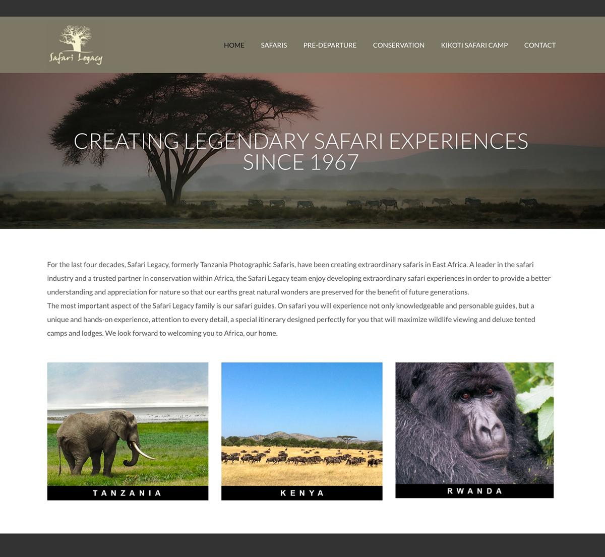 Adobe Portfolio Web Design  web development
