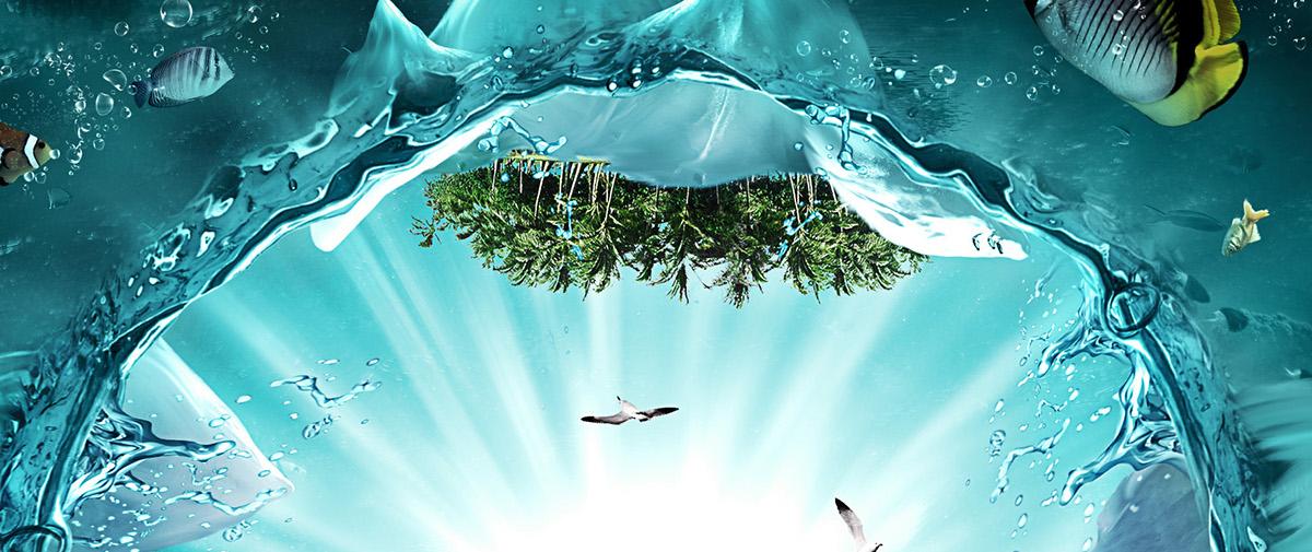 water underwater watre sea Nature fish