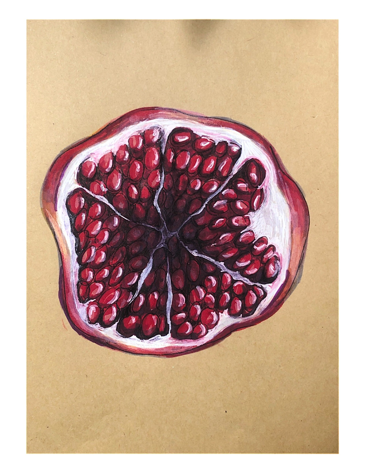 Image may contain: drawing and fruit