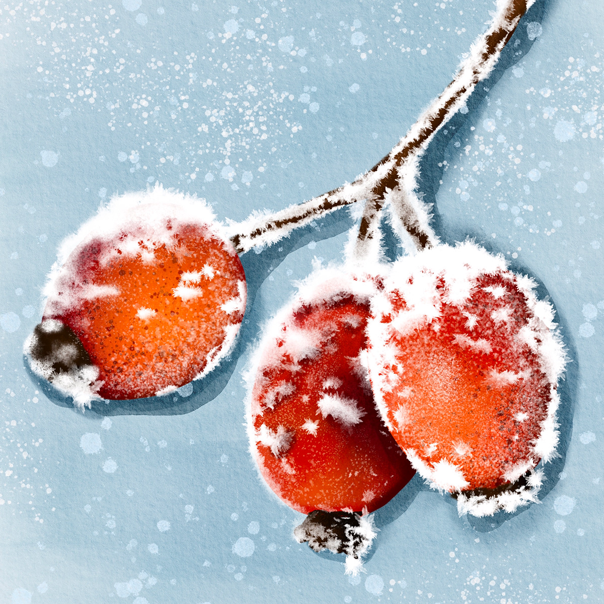 berries cold Flowers ice Nature red snow watercolour winter