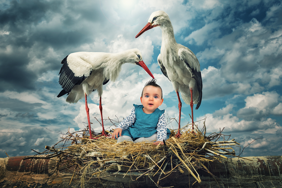 john Wilhelm photoholic family photoshop