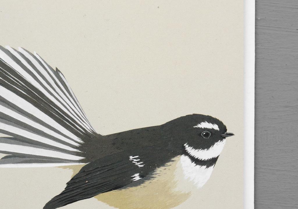 illustrated new zealand bird greeting cards on behance